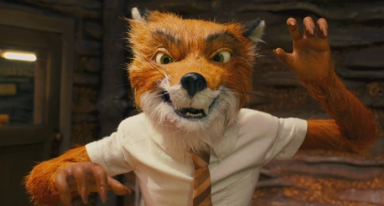 Angry Mr. Fox